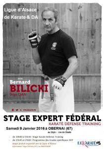 Stage d'Expert B Bilicki 9 janvier 2016